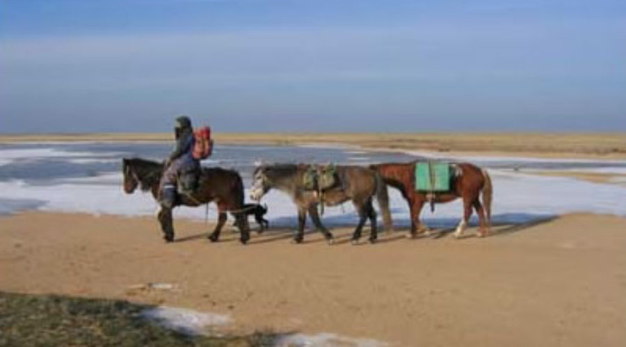 Tim Cope : Following the Route of Ghengis Khan by Horseback
