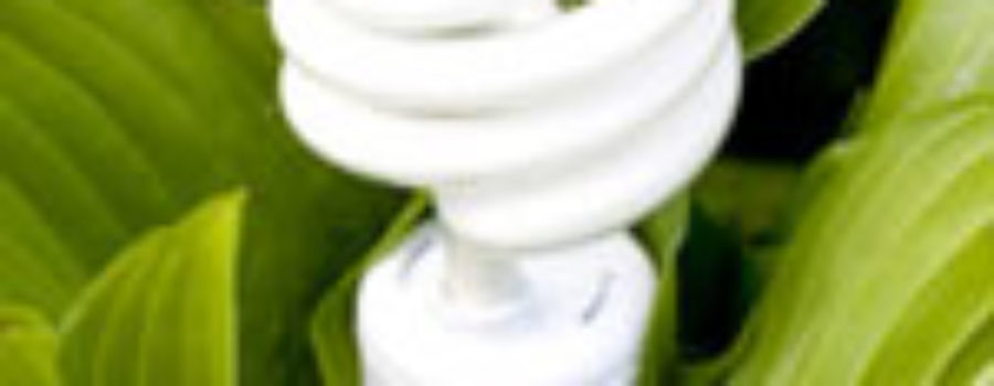 Home Greenovations – Part 2