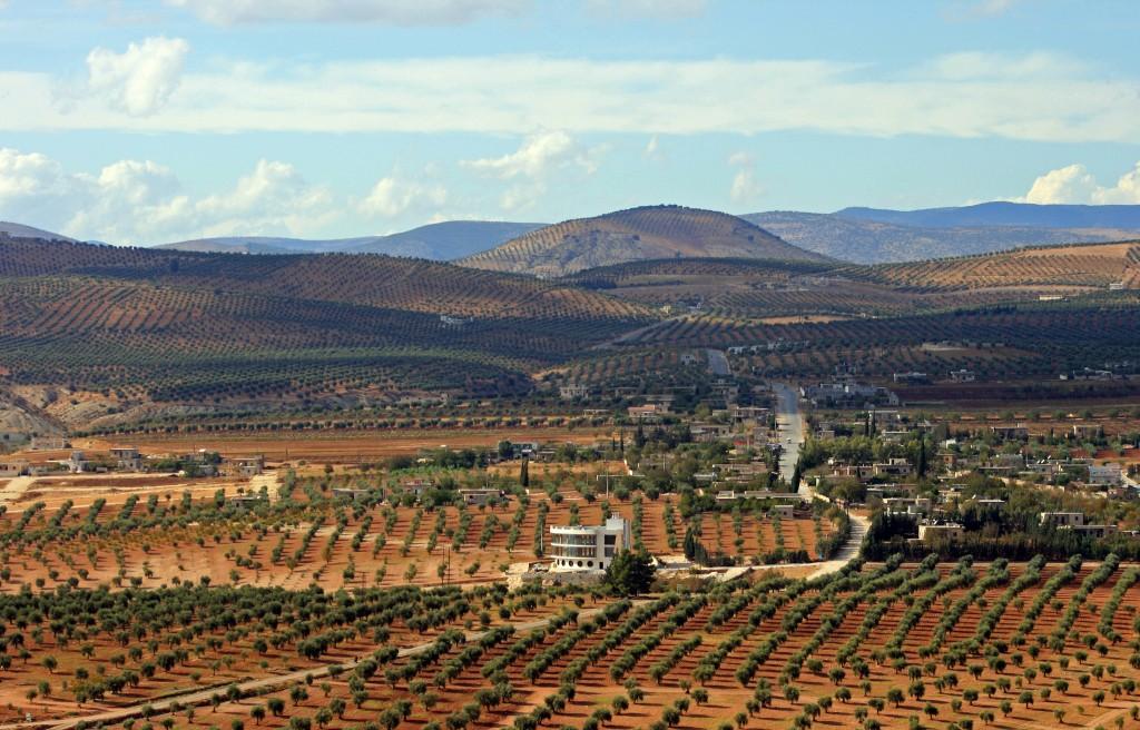 Julie's Kurdish family's village and olive groves